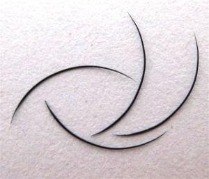 2-TIP-Lashes o llamadas también Twin Lashes | 0,20 mm de espesor | de 13 mm de longitud